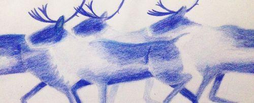 Running_caribou